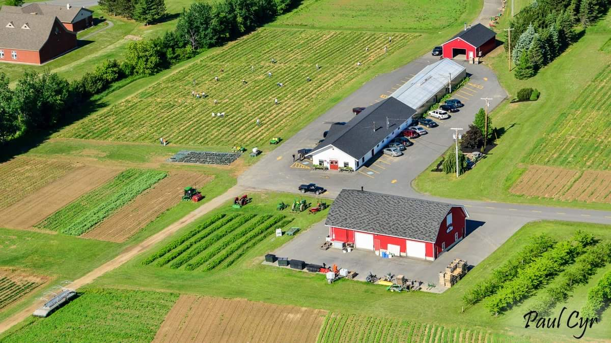 """Paul Cyr's aerial shot shows the MSAD#1 Educational Farm. MSAD#1 Educational Farm had its last year of help from PIHS students. """"The Educational Farm has been a good place to work the past two years, and I sure will miss it,"""" Portia Shaw '21 said."""