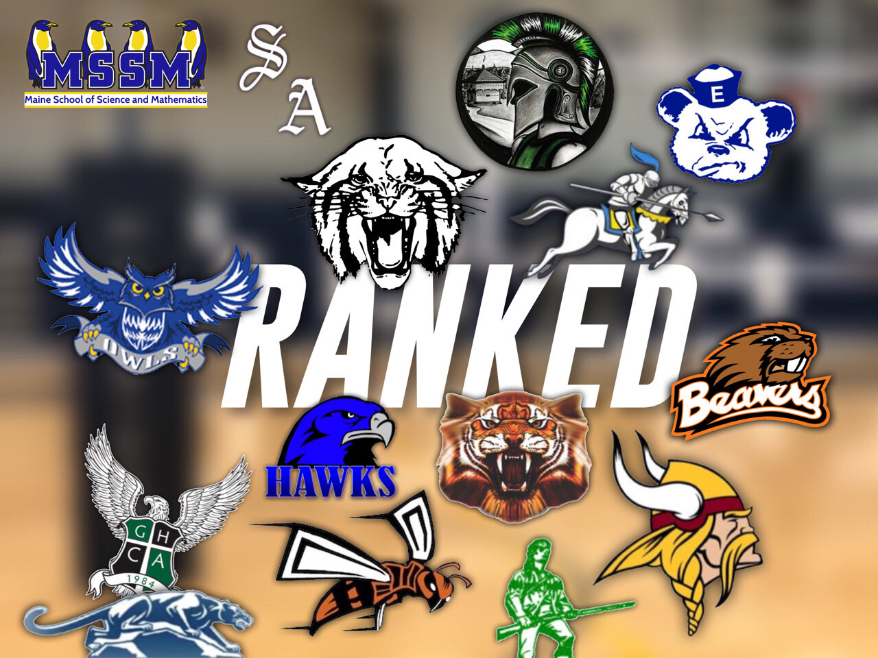 Big County, small schools, huge traditions. Sportswriter Cameron Levasseur offers up a ranking of the sports logos of our local schools.