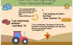 How Are You Spending Your Harvest Break?