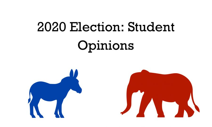 2020 Election: Students' Opinions